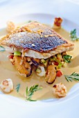Sea bass with mussel ragout