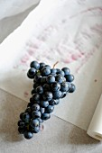 Red grapes on a piece of paper
