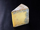 Bleu de termignion (French cow's milk cheese)