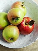 Verschiedene Äpfel in einer Schüssel