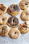 Various homemade bagels