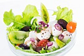 Mozzarella salad with tomatoes, olives and lettuce
