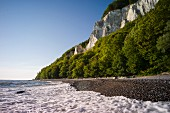 Jasmund National Park on Rügen – view of the chalk cliffs