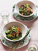 Gebratenes Rindfleisch mit Brokkoli und Hoisinsauce (China)