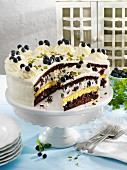 Creamy blueberry cake with four layers