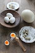 Weichgekochtes aufgeschlagenes Hühnerei mit Eierbecher und Eierlöffel auf Holztisch