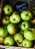 Green Bramley apples in a basket
