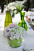 Hydrangea flowers decorating table