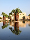 Palm trees reflected in the water in front of the Medina of Fez, one of the four royal cities in Morocco