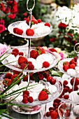 Meringues, raspberries, strawberries and cherries on cake stand