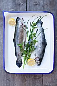 Fresh trout with herbs and lemons