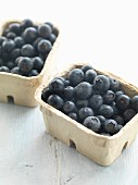 Fresh blueberries in cardboard punnets