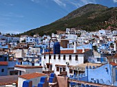 A view of the Medina of Chefchaouen, Rocco