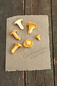 Chanterelle mushrooms on a piece of paper