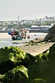 Fischerboot vor der Küste von Padstow (Cornwall, England)