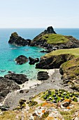 Kynance Beach bei Lizard Point in Cornwall (England)