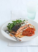 Stuffed salmon fillet with fried tomatoes and rocket