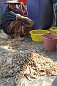 Prawns at a market, Thailand