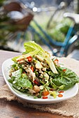Mixed leaf salad with smoked chicken, buckwheat and chilli