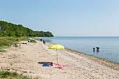 Strand am Palmer Ort auf der Halbinsel Zudar, Rügen