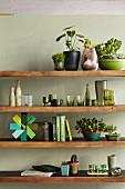 Holz Ablagen mit Grünpflanzen, Geschirr und Dekowaren in verschiedenen Grüntönen, an pastellgrüner Wand