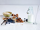 Blueberries, nuts, oats and milk