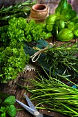 Various herbs on a rustic board