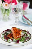 Marinated salmon on a bed of salad