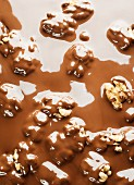 Walnuts in melted chocolate