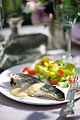 Grilled mackerel fillet with a mustard and mayonnaise sauce