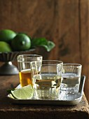 Three kinds of tequila with fresh limes
