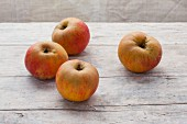 Four organic Lederapfel apples on a wooden surface