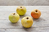 For organic Landsberger apples on a wooden surface