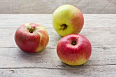 Three organic Brettacher apples on a wooden surface