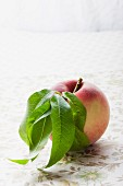 A white peach with leaves