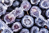 Frozen blueberries (seen from above)