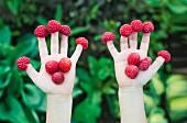 Raspberry hands