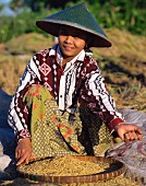 A young woman processing freshly harvested rice, Lombok, Indonesia