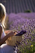 A young woman in a large lavender field, Provence, France