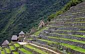 Terrassenanbau in Machu Picchu, die verlorene Stadt der Inkas, die von Hiram Bingham im Jahre 1911 wiederentdeckt wurde; Peru, Südamerika