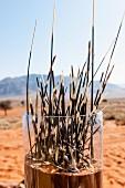 'Dune Camp' in Wolwedans, NamibRand Privatreservat, Namibia, Afrika - Stachelschweinborsten im Glas als Dekoration