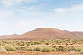 Landscape near Sesfontein, Kunene Province, Namibia, Africa