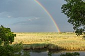 A rainbow over the flood plain of the flood plain of the Kwando River, Namibia
