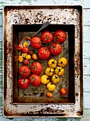 Slow roasted heirloom tomatoes on a baking tray (seen from above)