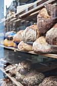 Verschiedene Brote im Schaufenster einer Bäckerei (Close Up)