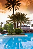 A palm tree island in a pool, Hotel La Mamounia in Marrakesh, Morocco