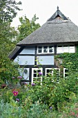 A beautiful thatched roof house with a wild garden, Quilitz in Lieper Winkel, Usedom, Mecklenburg-Vorpommern