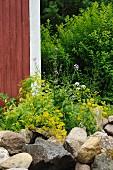 Grosse Steine als Abgrenzung vor blühenden Blumen im Garten