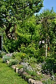 Blühende Blumen im Beet, mit Steinen eingefasst, in sommerlichem Garten