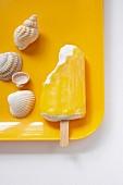 An arrangement of seashells and fruit flavoured ice cream stick